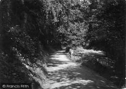 Glyndyfrdwy, Coed Cathe c.1955