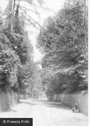 Godalming, Holloway Hill 1907