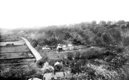 Godalming, view from Frith Hill 1898