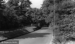 Golders Green, Golders Hill c.1960