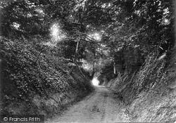 Gomshall, Cole Kitchen Lane 1917
