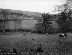 Gomshall, The Hills 1925