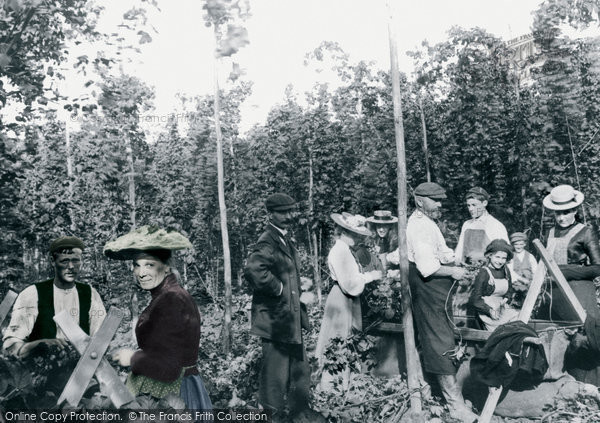 Goudhurst, Hop Pickers 1904