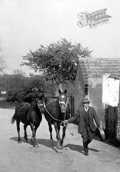 Leading Horses 1929, Grantchester