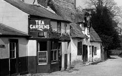 Tea Gardens 1929, Grantchester