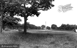 Grays, Hangmans Wood c.1955