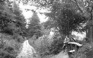 Hindhead, Waggoners Wells Lane 1907