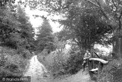 Waggoners Wells Lane 1907, Grayshott