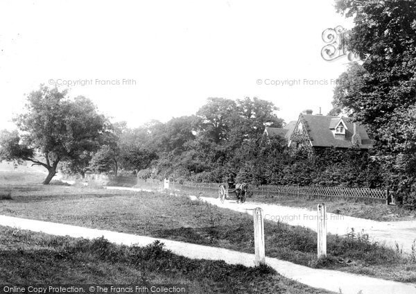 Great Bookham, Common 1904