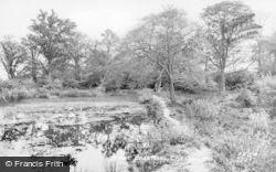 Great Bookham, Fish Ponds 1927