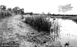 Trent And Mersey Canal c.1955, Great Haywood