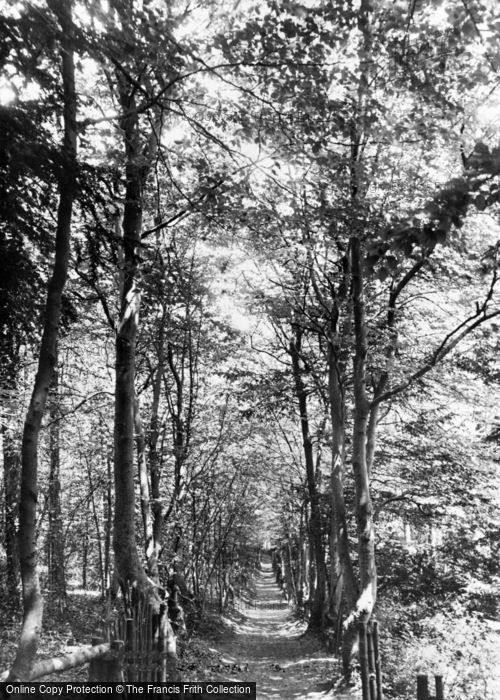 Photo of Green Street Green, Beeches Walk c.1955