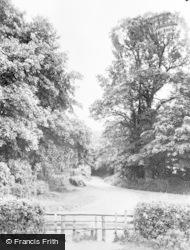 Roman Road c.1955, Green Street Green