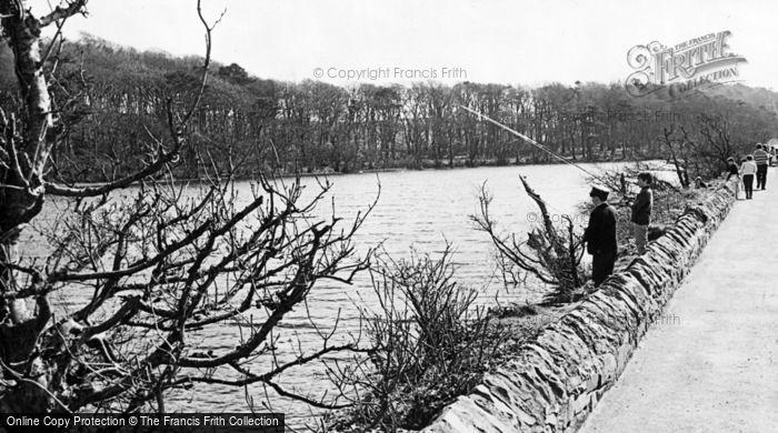 Photo of Greyabbey, The Lake c.1960