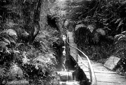 Groudle Glen, The Rustic Path 1894