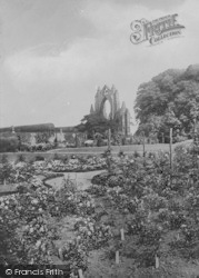 Guisborough, Priory, The Rose Garden 1906