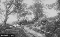 Gumfreston, Scotsborough Lane 1890