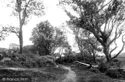Gumfreston, Scotsborough Lane Scene 1890
