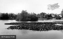The Common Pond c.1965, Hailsham