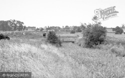 The River Bed c.1955, Halesworth