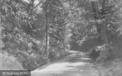 Hambledon, Rock Lane 1904