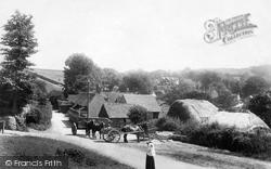 Hambledon, Village 1904