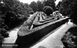 Hampton Court, Palace, The Maze c.1950