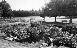 Handcross, Lily Pool, Handcross Park c.1960