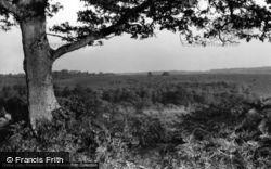 St Leonard's Forest c.1955, Handcross
