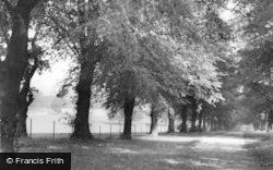 Harpenden, Rothamsted Park c.1960