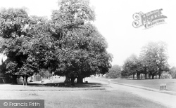 Harpenden, The Common c.1877