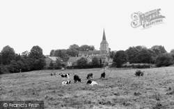 Hartfield, St Mary's Church From The Green c.1960