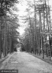 Manor Drive c.1955, Hartley
