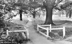 Hartley Wintney, On The Common c.1955