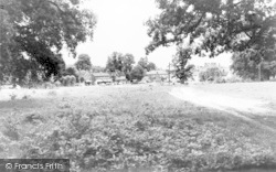 Hartley Wintney, The Common c.1960