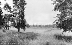 The Golf Course c.1955, Hartley Wintney