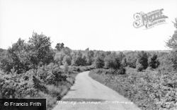 Haslemere, Marley Common c.1955