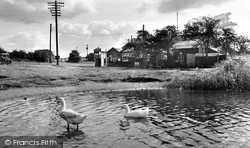 Hatchmere, The Lake And Café c.1955