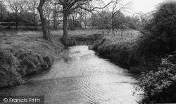 Hatfield Peverel, The River Ter c.1960