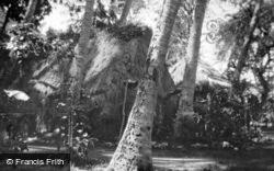 Lalani Hawaiian Village, Hale c.1935, Hawaii