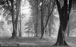 Hawarden, Park, The Beechwood c.1900