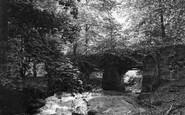 Hawarden, the Ladies Waterfall c1900
