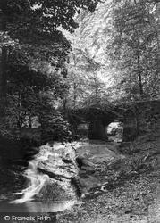 Hawarden, The Ladies Waterfall c.1900