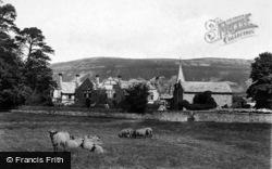 Sheep At Simonstone Hall 1900, Hawes