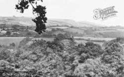 Hawkchurch, General View c.1955