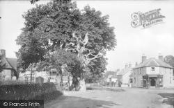Old Oak 1925, Hawkhurst
