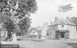 Old Tree And Village Shop 1925, Hawkhurst