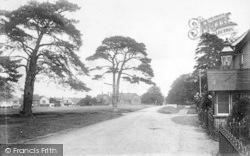 The Moor 1902, Hawkhurst
