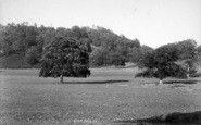 Hawkstone Park photo