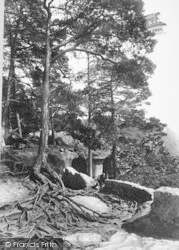 Entrance To Grotto 1898, Hawkstone Park